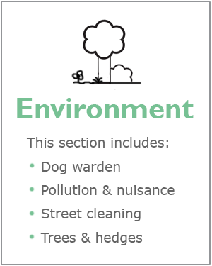 Environment webpages