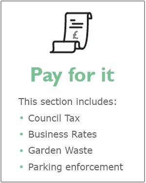 Pay for it webpage