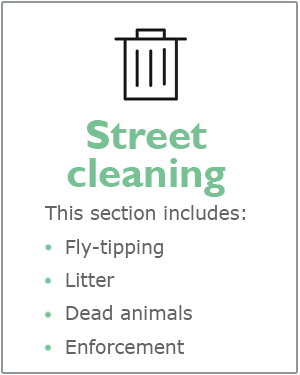 Street cleaning webpage